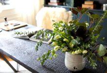 Πέντε φυτά εσωτερικού χώρου που βελτιώνουν την υγεία σας!