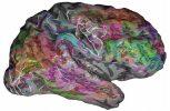 Χαρτογραφώντας το νόημα των λέξεων στον εγκέφαλο