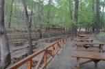 Ανακοίνωση Τμήματος Δασών για πληρότητα εκδρομικών χώρων