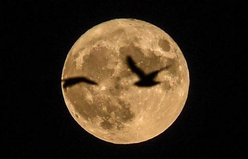 σελήνη, πανσέληνος