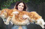 Ομάρ, η μεγαλύτερη γάτα στον κόσμο