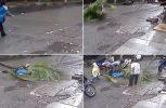 ΣΟΚ! Φοίνικας σκοτώνει παρουσιάστρια στην Ινδία! (video)
