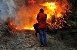 Μεγάλη πυρκαγιά στην Ηλεία, δεν απειλούνται κατοικημένες περιοχές