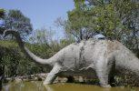 Δημοπρασία απολιθωμένης ουράς δεινοσαύρου για επιδιόρθωση σχολείων στο Μεξικό