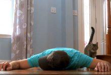 Τι θα έκανε η γάτα σου αν διαπίστωνε ότι πέθανες;