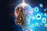 Πως οι πληροφορίες «εισβάλλουν» στον εγκέφαλο μας;