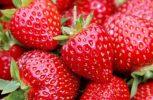 Άγνωστοι έριξαν καρφίτσες και βελόνες μέσα σε φράουλες στην Αυστραλία