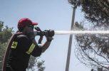 Υπό πλήρη έλεγχο δασική πυρκαγιά στις Πλάτρες