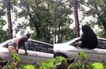 Απίστευτη περιπέτεια με αρκούδα