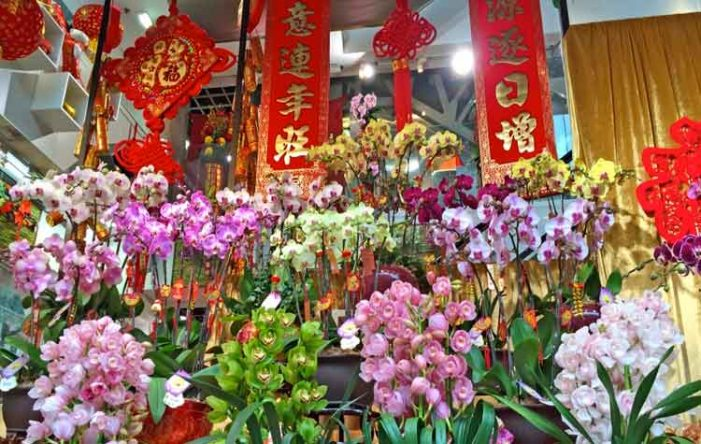 Σε άνθηση η αγορά λουλουδιών του Πεκίνου ενόψει της Κινεζικής Πρωτοχρονιάς